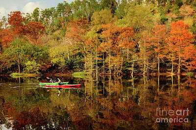 Photograph - Beaver's Bend Canoeing by Tamyra Ayles