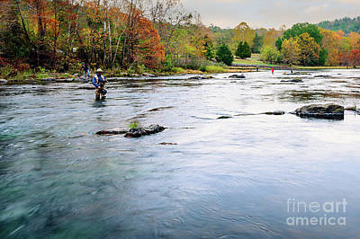 Beaver's Bend Fly Fishing Print by Tamyra Ayles