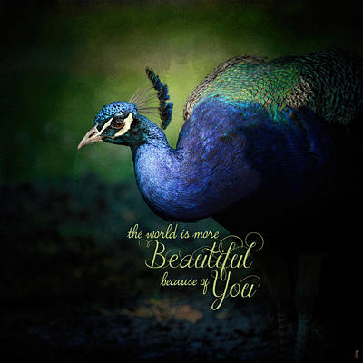 Peacock Photograph - Because Of You - Peacock Art by Jai Johnson