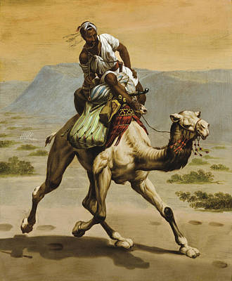 Ippolito Caffi Painting - Bedouin On A Camel by Ippolito Caffi
