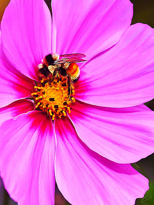 Manipulation Photograph - Bee On Pink by Bill Caldwell -        ABeautifulSky Photography