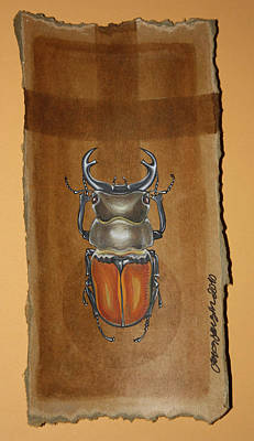 Mixed Media - Beetle II by Gonca Yengin