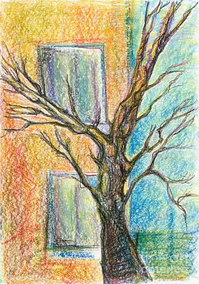 befor florescence. May, 20153 Original by Tatiana Chernyavskaya