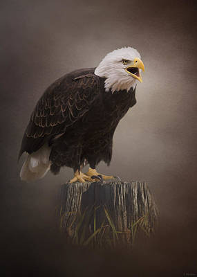 Jordan Painting - Begin Doing - Eagle Art by Jordan Blackstone