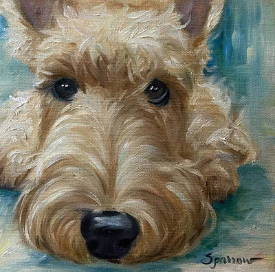Scottish Dog Painting - Being Still by Mary Sparrow