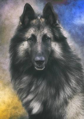 Belgian Sheepdog Photograph - Belgian Tervuren Portrait 1 by Wolf Shadow  Photography