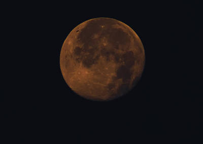 Moon Photograph - Bella Luna by Bill Cannon