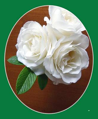 Belles Roses Blanches Print by Will Borden