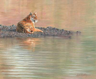 India Wildlife Painting - Bengal Tiger by David Stribbling