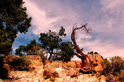 Grand Canyon Digital Art - Bent The Grand Canyon by Tom Prendergast