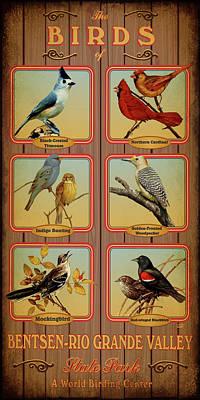 Mockingbird Digital Art - Bentsen-rio Grande Valley State Park by Jim Sanders