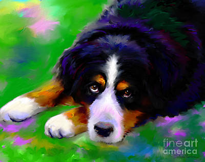 Puppies Painting - Bernese Mountain Dog Portrait Print by Svetlana Novikova
