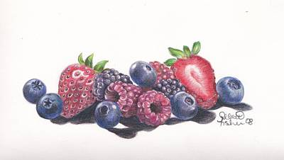 Raspberry Drawing - Berry Delight by Debbie Fischer