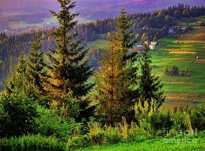 Dog In Landscape Photograph - Beskidy Mountains by Mariola Bitner
