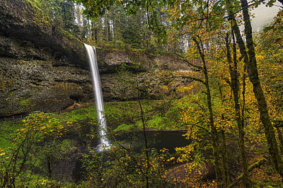 Fall Leaves Photograph - Best Of Silver Falls by Mark Kiver