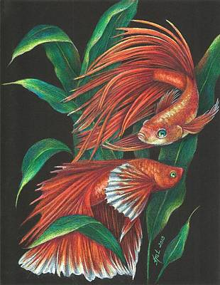 Betta Print by Kat Ewing