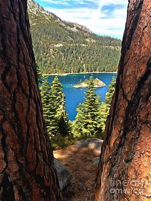 Pine Trees Photograph - Between The Pines by Krissy Katsimbras