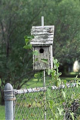 Charming Cottage Digital Art - Beyond The Garden Gate  by Ella Kaye Dickey