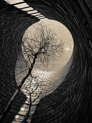 Beyond Print by Tom Druin