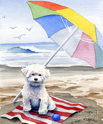 Dog Playing Ball Painting - Bichon Frise At The Beach II by David Rogers