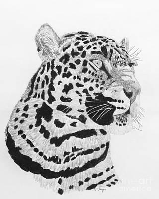 Big Cat Print by Robert Yaeger