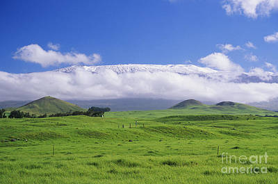 Mauna Kea Photograph - Big Island, Waimea by Peter French - Printscapes