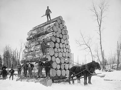 1890s Photograph - Big Load Of Logs On A Horse Drawn Sled by Everett