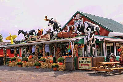 Vermont Country Store Photograph - Big Moose Deli And Country Store  # 2 by Allen Beatty