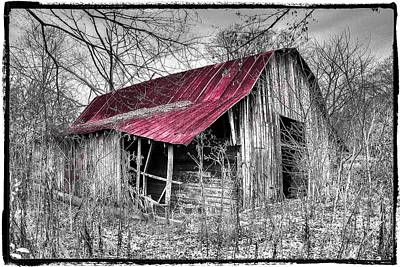 Big Red Print by Debra and Dave Vanderlaan