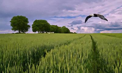 Photograph - Big Sky by David Dehner