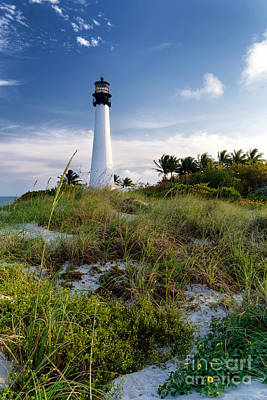 Photograph - Bill Baggs Cape Florida State Park by Eyzen Medina
