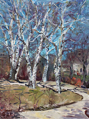 Birch Trees Next Door Print by Ylli Haruni