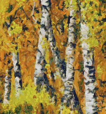 Birch Painting - Birches And Ferns by Dragica Micki Fortuna