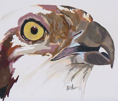 Bird Of Prey  Osprey Original by Steve Teets