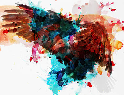 Soaring Mixed Media - Bird Of Prey by Solomon Barroa