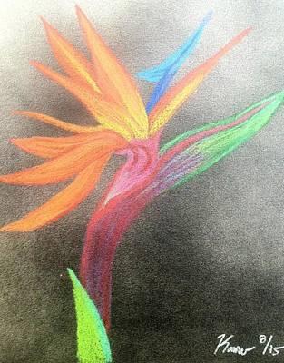 Bird Of Spray #1000 Print by Kamuwela Santos