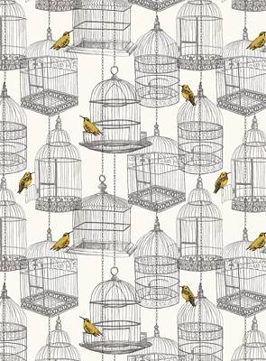 Hummingbird Drawing - Birdcages by Stephanie Davies