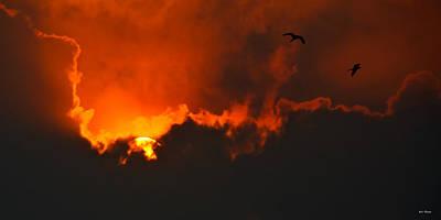 Birds At Sunset Print by Bibi Romer