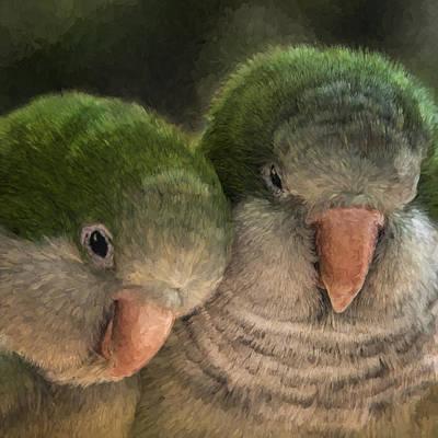 Lovebird Digital Art - Birds In Love - Lovebirds Cuddling - Digital Painting by Mitch Spence