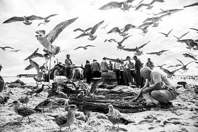 Fishermen Photograph - Birds by Liesbeth Van Der Werf