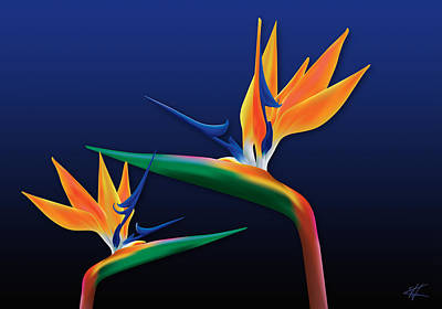 Birds Of Paradise Print by Kenneth Armand Johnson