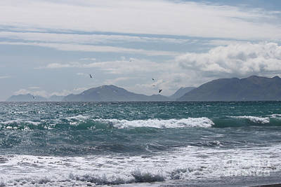 Blue Photograph - Birds Over Stormy Water by Carolyn Brown