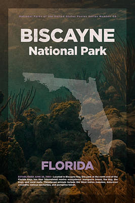 National Parks Mixed Media - Biscayne National Park In Florida Travel Poster Series Of National Parks Number 05 by Design Turnpike