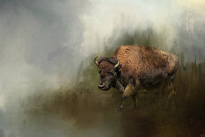 Bison After The Mud Bath Print by Jai Johnson