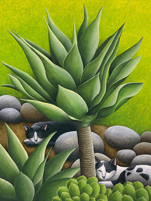Black And White Cats With Agaves Print by Carol Wilson