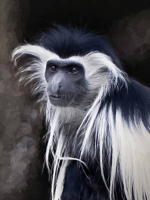 Black And White Colobus Monkey Print by Penny Lisowski