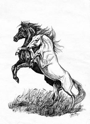 Wild Horses Drawing - Black And White by Jana Goode