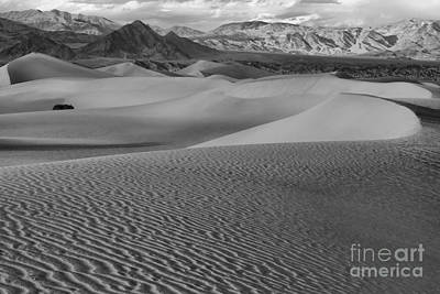 Black And White Mesquite Sand Dunes Print by Adam Jewell