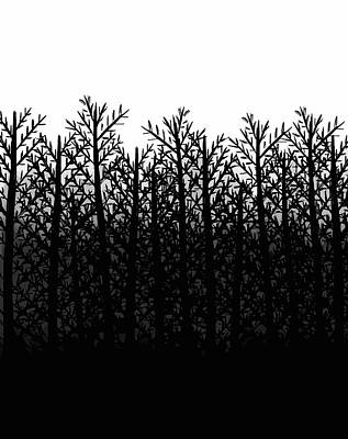 Gradations Drawing - Black And White Winter Trees by Rachel Follett