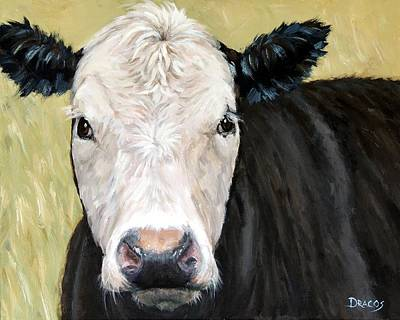 Black Angus Cow Steer White Face Original by Dottie Dracos